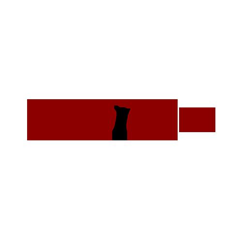 Wopidom